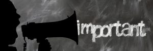 bullhorn and the word important