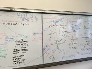 systems thinking map middle